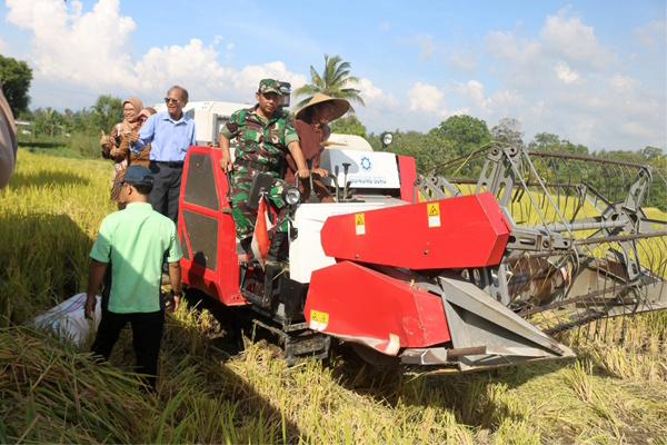 Panen Raya Demplot Padi Aplikasi Biokonversi di Lombok Barat, Hasilnya Mengejutkan !!